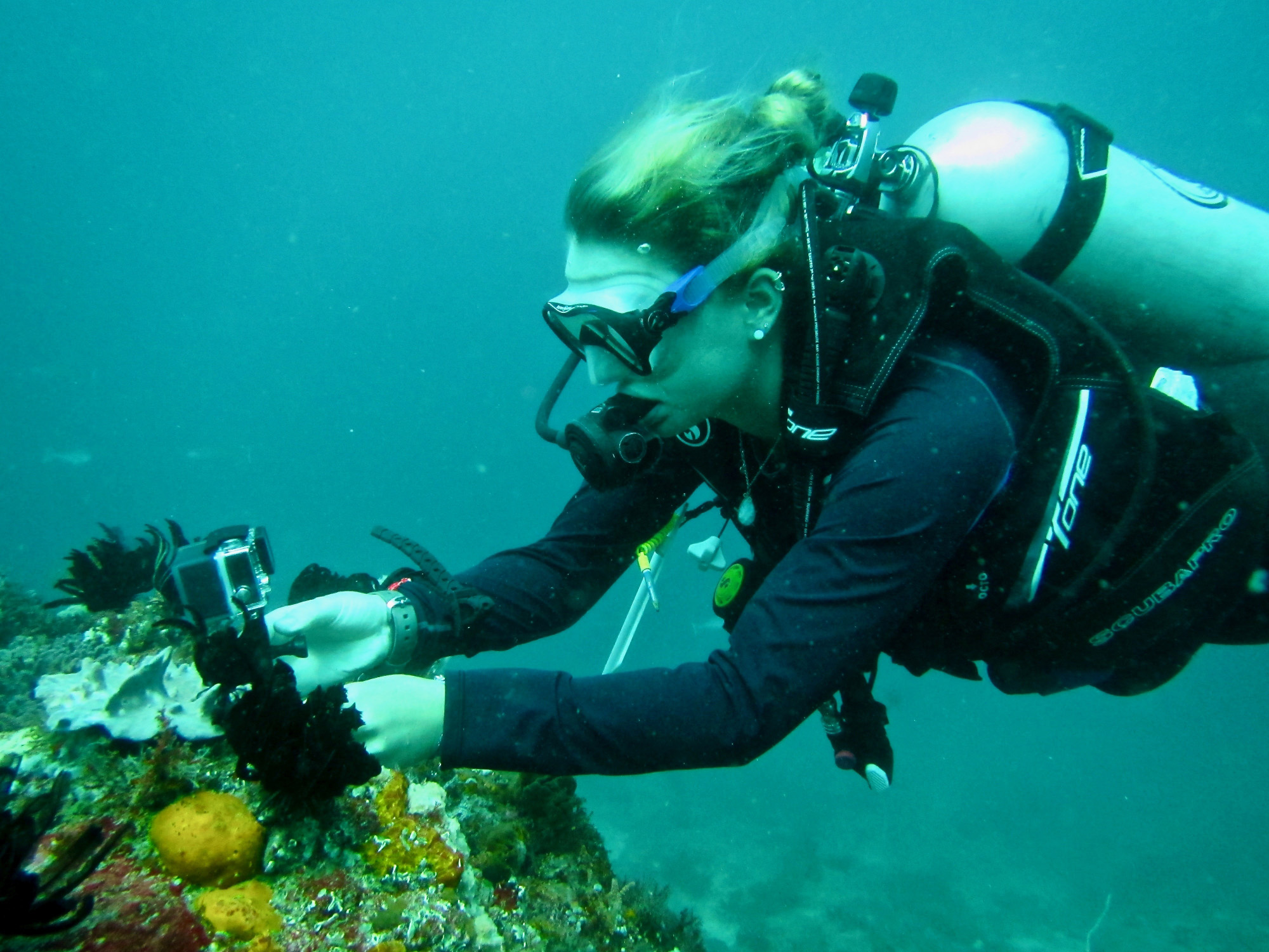 Student scuba diving in Indonesia