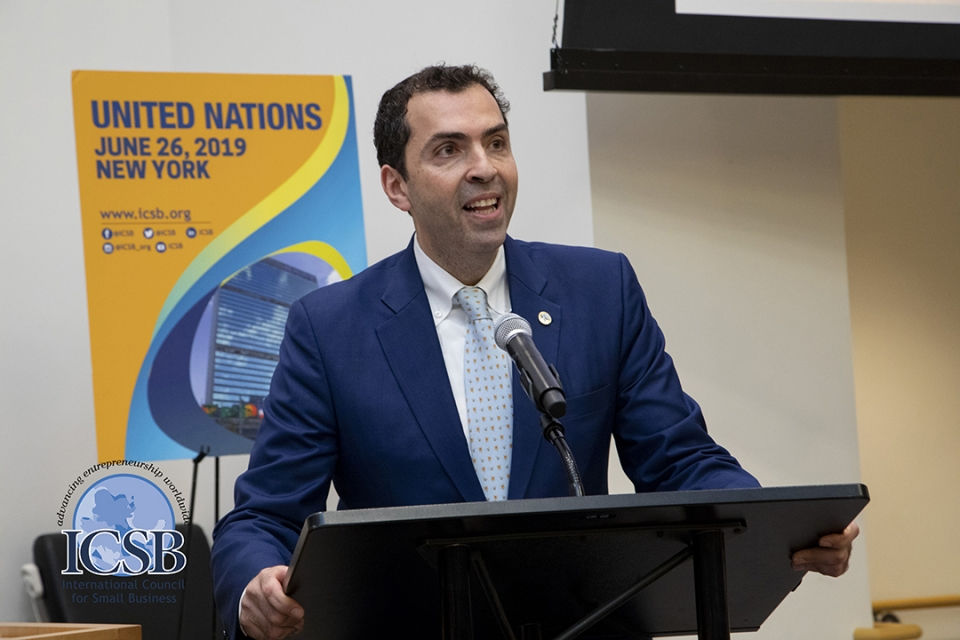 Professor Ayman El Tarabishy speaks at the United Nations.